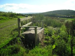 Take a rest at the rustic seat during the Cluny Crichton walk